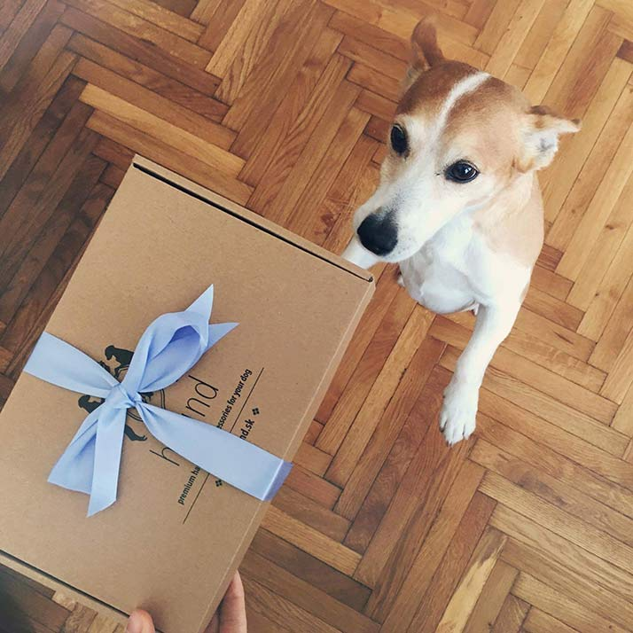 unboxing-hound